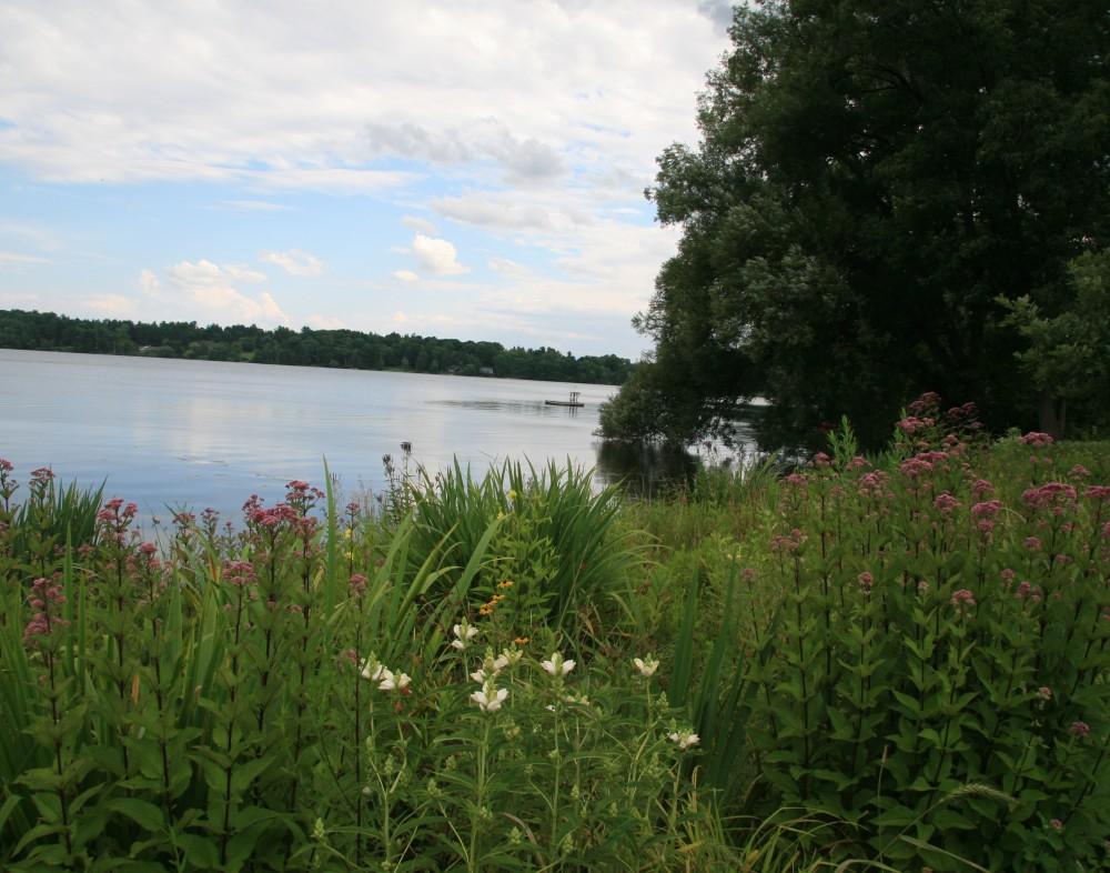 LWLA_Meadow_LakevilleCT_04