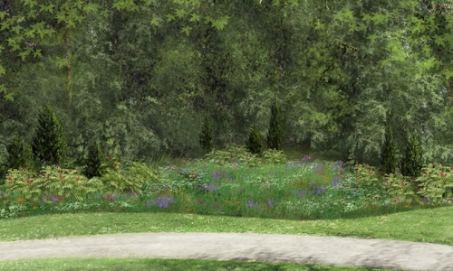 LWLA Meadow Sim_Mature Meadow